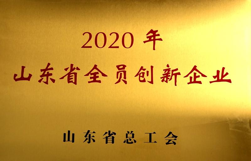 山东省全员创新企业